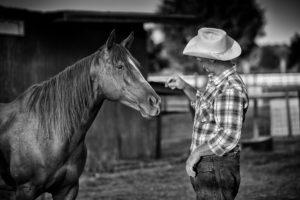 cowboy treat