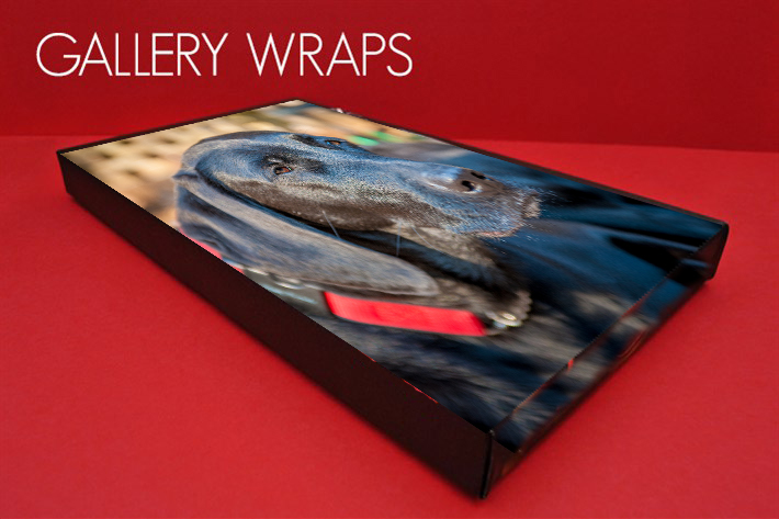Gallery-Wrap-New1 copy